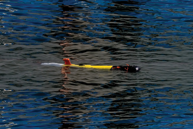 NTNU purchases Remus 100 AUV
